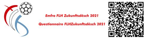 Emfro FLH Zukunftsdësch 2021 / Questionnaire FLH Zukunftsdësch 2021